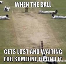 Australian Memes - the australian cricket team images cricket memes wallpaper and