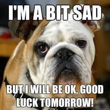 Georgia Bulldog Memes - speak of the devil a day in the life of a dog