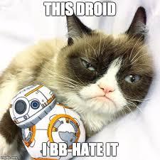Grumpy Cat Meme Generator - tard the grumpy cat meme generator best cat wallpaper 2018