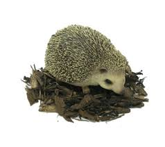 pet pals pygmy hedgehog resin garden ornament 6 99
