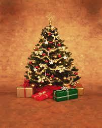 christmas tree backdrops part 34 vinyl christmas photography