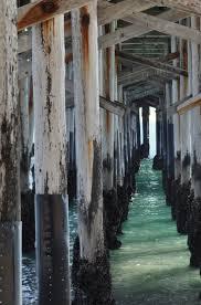 the 25 best balboa beach ideas on pinterest san diego visit