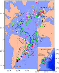 Ccw Map Migration And Stopover In A Small Pelagic Seabird The Manx