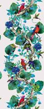 Powder Room Film Top 25 Best Nina Campbell Ideas On Pinterest Floral Print