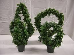 Topiaries Plants - 142 best terrific topiaries images on pinterest topiary garden