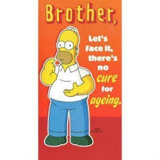 birthday email cards homer birthday ecards homer homer