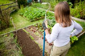 7 steps to becoming the perfect self sufficient woman the garden