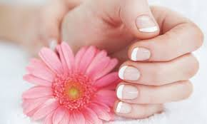nail salons in mentor ohio the nail collections