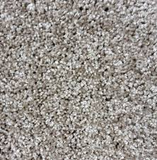 designers image tender touch plush carpet 12 ft wide at menards