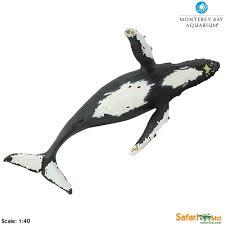 humpback whale toy safari ltd