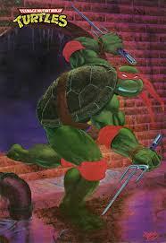 Teenage Mutant Ninja Turtles Twin Bed Set by Bunk Beds Teenage Mutant Ninja Turtles Wall Paper Ninja Turtle