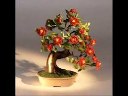 beautiful artificial bonsai trees