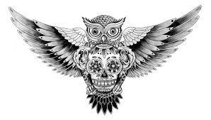 black ink owl with roses and sugar skull design truetattoos
