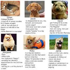 Hyper Dog Meme - dank meme university