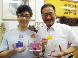 Preserve Flowers Professor Develops Way To Preserve Dried Flowers U0027 Color Taipei Times