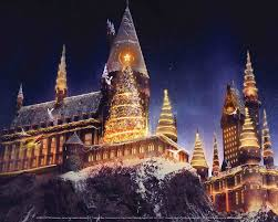 wizarding harry potter archives magical menagerie