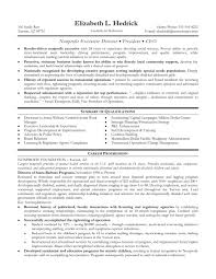 Resume Overview Samples by Non Profit Resume Sample Free Resume Example And Writing Download