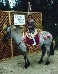 Riding Costumes Halloween Hilarious Horse Halloween Costumes Craziest
