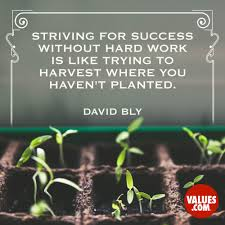 Haven T Striving For Success Without Hard Work Is Like Trying To Harvest