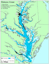 Chesapeake Bay Map Map Of Chesapeake Bay Showing Locations Of Release Sites