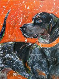 bluetick coonhound reviews 60 best i love blueticks images on pinterest bluetick coonhound