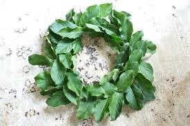 magnolia leaf wreath leaf wreath ibbc club