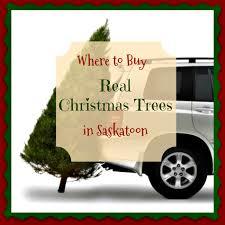 where to buy real trees in saskatoon