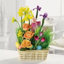 flower delivery san jose san jose florist flower delivery by oakhill curtner florist