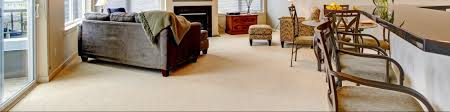 carpet cleaning services in st charles mo dust free floors
