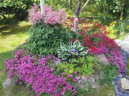 Small Backyard Design Ideas Pictures Best 25 Rock Garden Design Ideas On Pinterest Rocks Garden