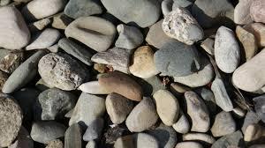 pierre pour jardin zen images gratuites roche bois caillou sol mur de pierre