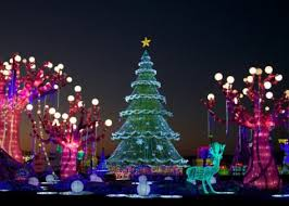 magic winter lights dallas 12 dates of christmas jtac news