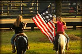 California Flag Horse Ponies For Sale Horse Of My Dreams