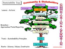 ecosteps sustainability answers 1 why do sustainability tree