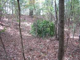 Best Hunting Ground Blinds Building A Natural Ground Blind 7 Steps