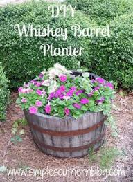 tutorial for the one hour whiskey barrel planter at