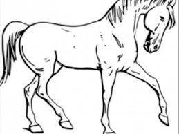 free colouring pages printable horse coloring pages decoration
