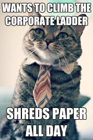 Shredding Meme - united shredding ltd unitedshredding twitter