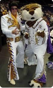 Lsu Area Rugs 113 Best Lsu Tigers Images On Pinterest Lsu Tigers Louisiana