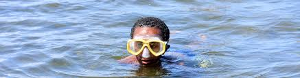 Vermont snorkeling images Vermont state parks north hero jpg