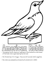 american robin coloring