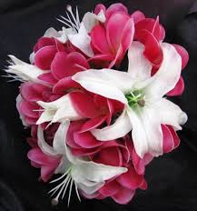 casablanca lilies touch bouquet frangipani plumeria casablanca