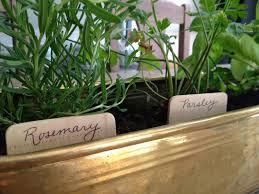 the happy homebodies diy indoor herb garden