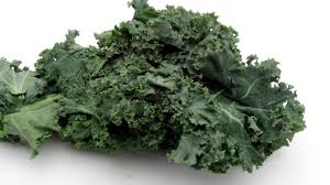 for socal veggie gardeners fall u0027s warm soil makes this u0027a