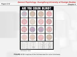 Color Blindness Psychology Chapter 4 Sensation And Perception Ppt Download