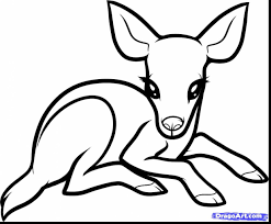 amazing how to draw cute baby deer with baby animals coloring