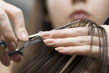 which is the best hair cut salon in udaipur quora