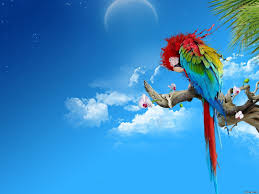 Colorful Pictures D Free Hd Top Most Downloaded Wallpapers Page 165