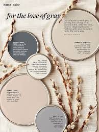 Living Room Paints Colors - nature inspired color palettes cold temperature ash grey and stony