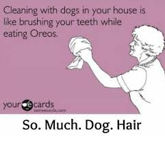 Your Ecards Memes - 25 best memes about your ecards someecards com your ecards